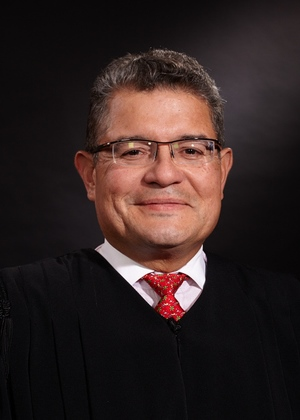 The Honorable Ruben Castillo